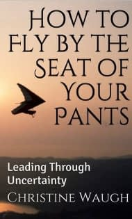 How to Fly by the Seat of Your Pants